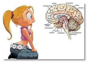 náš mozek